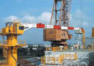 Straight (Box) Boom Crane (Offshore Maintenance Crane)